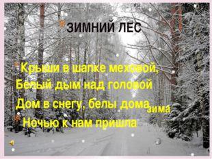 ЗИМНИЙ ЛЕС Крыши в шапке меховой, Белый дым над головой Дом в снегу, белы дом