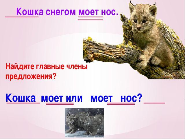 Кошка снегом моет нос. Найдите главные члены предложения? Кошка моет или моет...