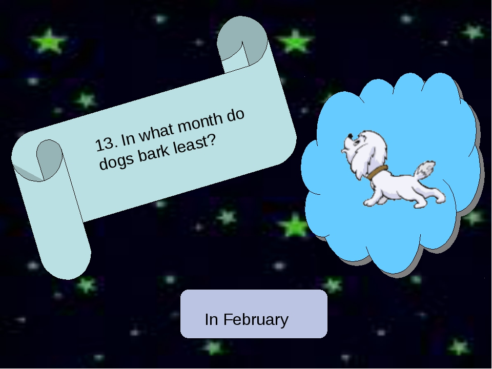 13. In what month do dogs bark least? In February