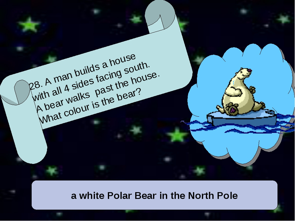 a white Polar Bear in the North Pole 28. A man builds a house with all 4 side...