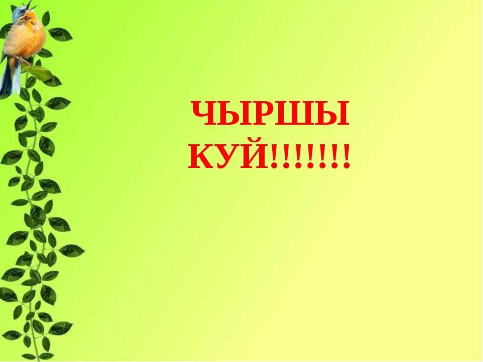 ЧЫРШЫ КУЙ!!!!!!! ь