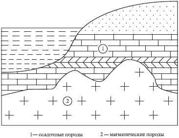 http://www.plam.ru/ekolog/estestvoznanie_i_osnovy_yekologii/i_024.jpg