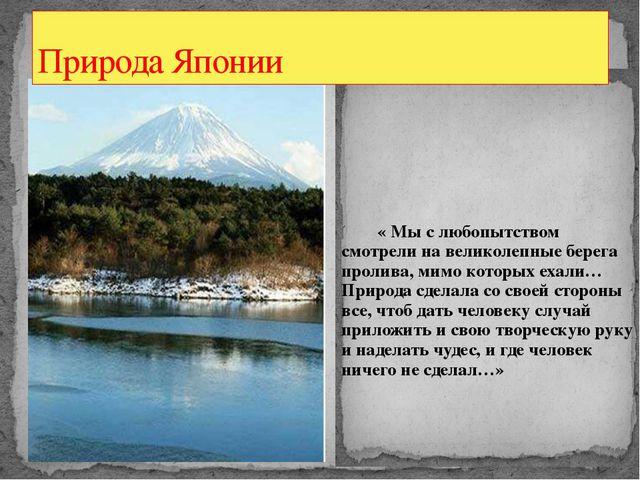 « Мы с любопытством смотрели на великолепные берега пролива, мимо которых ех...