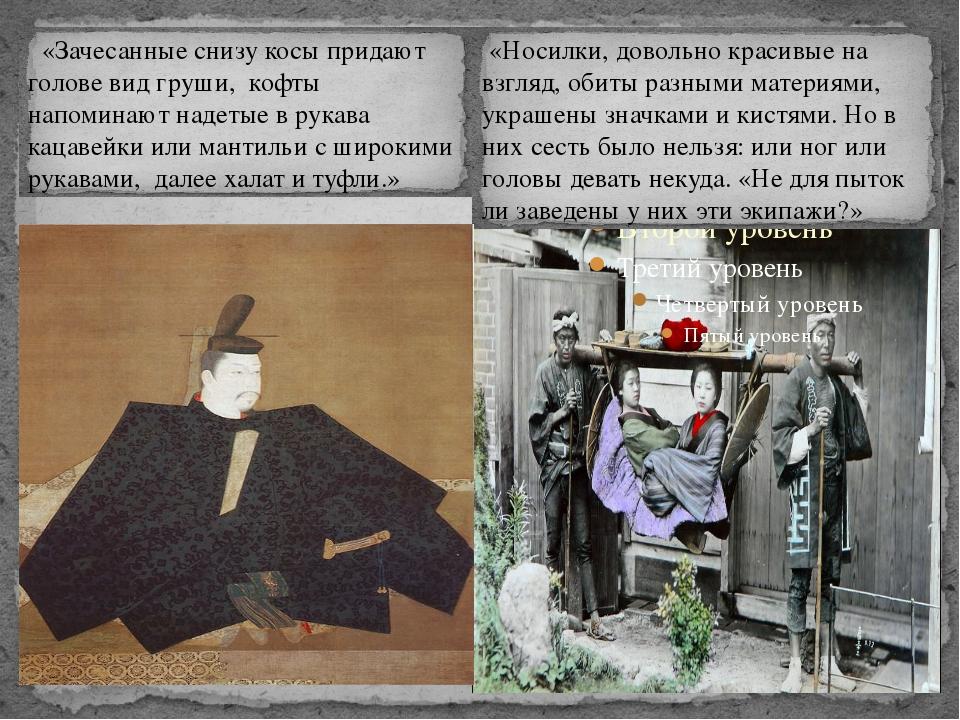 «Носилки, довольно красивые на взгляд, обиты разными материями, украшены зна...