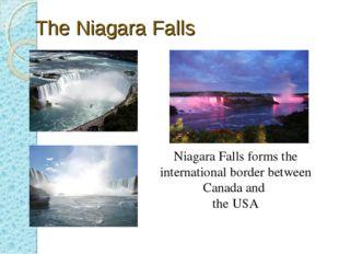 The Niagara Falls Niagara Falls forms the international border between Canada