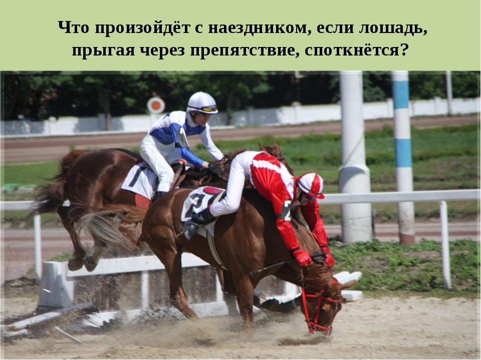 * Что произойдёт с наездником, если лошадь, прыгая через препятствие, споткнё...