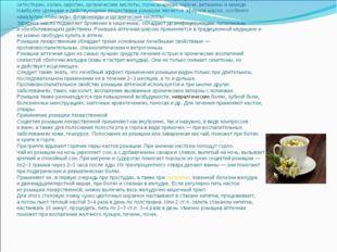 Химический состав илечебные свойства  Соцветия ромашки содержат эфирное мас
