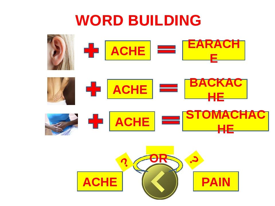 WORD BUILDING ACHE EARACHE ACHE BACKACHE ACHE STOMACHACHE PAIN ACHE OR ? ?