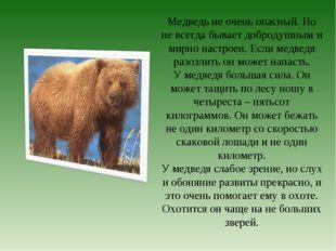 Медведь не очень опасный. Но не всегда бывает добродушным и мирно настроен. Е