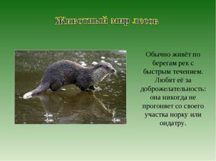 Обычно живёт по берегам рек с быстрым течением. Любят её за доброжелательност