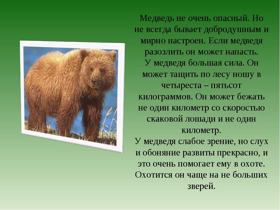 Медведь не очень опасный. Но не всегда бывает добродушным и мирно настроен. Е...