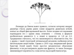 Леонардо да Винчи вывел правило, согласно которому квадрат диаметра ствола д