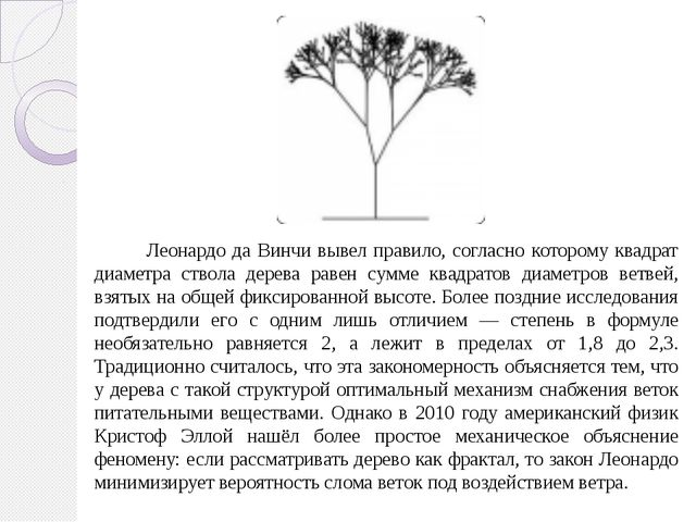 Леонардо да Винчи вывел правило, согласно которому квадрат диаметра ствола д...
