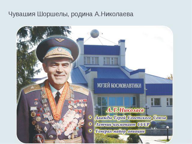 Чувашия Шоршелы, родина А.Николаева