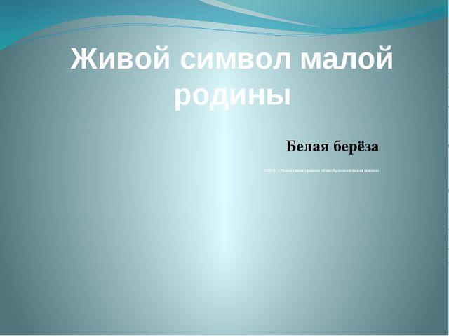 Живой символ малой родины Белая берёза МБОУ «Макеевская средняя общеобразоват...