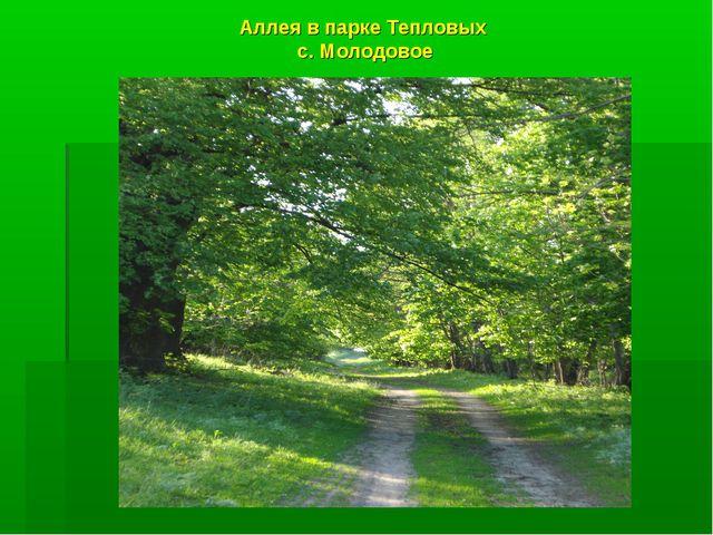 Аллея в парке Тепловых с. Молодовое