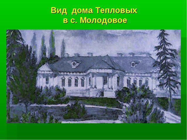 Вид дома Тепловых в с. Молодовое
