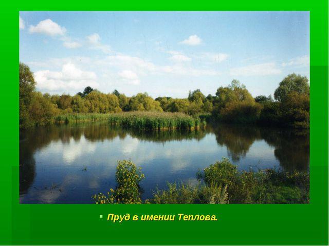Пруд в имении Теплова.
