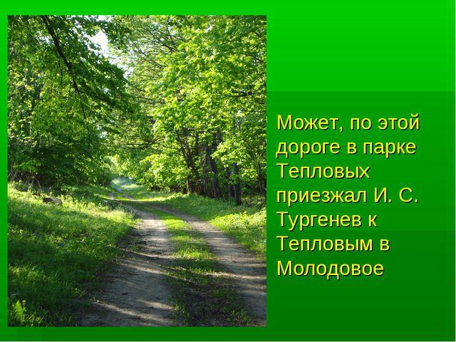 Может, по этой дороге в парке Тепловых приезжал И. С. Тургенев к Тепловым в М...