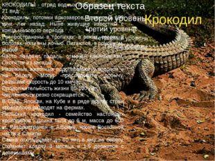 Крокодил КРОКОДИЛЫ - отряд водных пресмыкающихся, 21 вид. Крокодилы, потомки