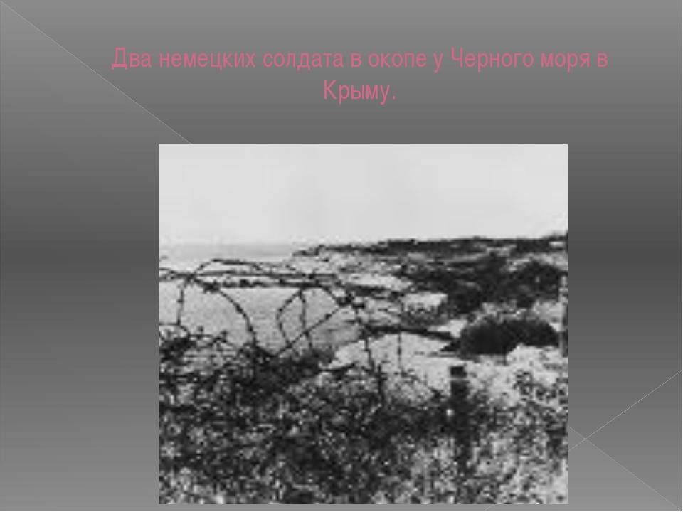 Два немецких солдата в окопе у Черного моря в Крыму.