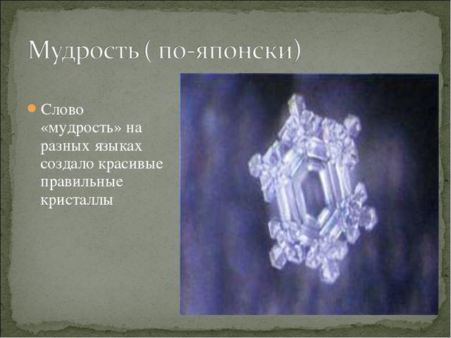 Слово «мудрость» на разных языках создало красивые правильные кристаллы