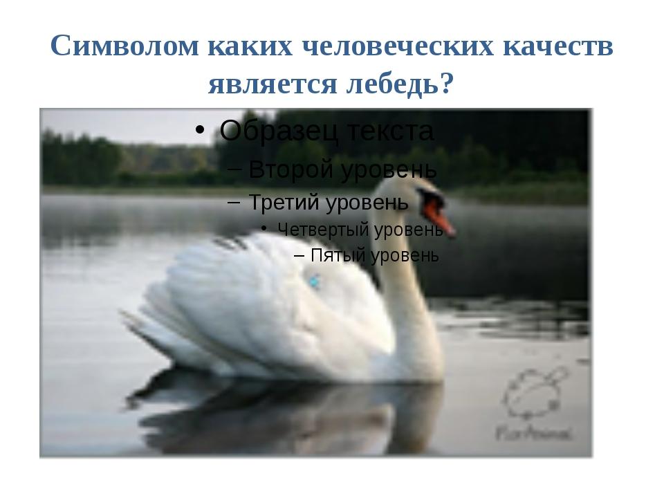Символом каких человеческих качеств является лебедь?