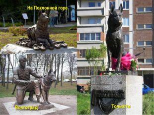 На Поклонной горе Волгоград Тольятти