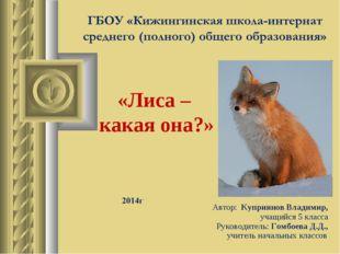 «Лиса – какая она?» Автор: Куприянов Владимир, учащийся 5 класса Руководитель