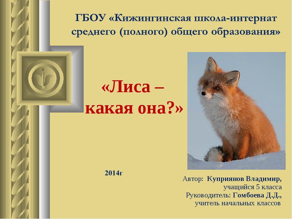 «Лиса – какая она?» Автор: Куприянов Владимир, учащийся 5 класса Руководитель...