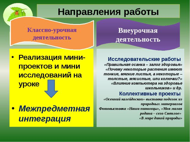 Направления работы Реализация мини-проектов и мини исследований на уроке Межп...