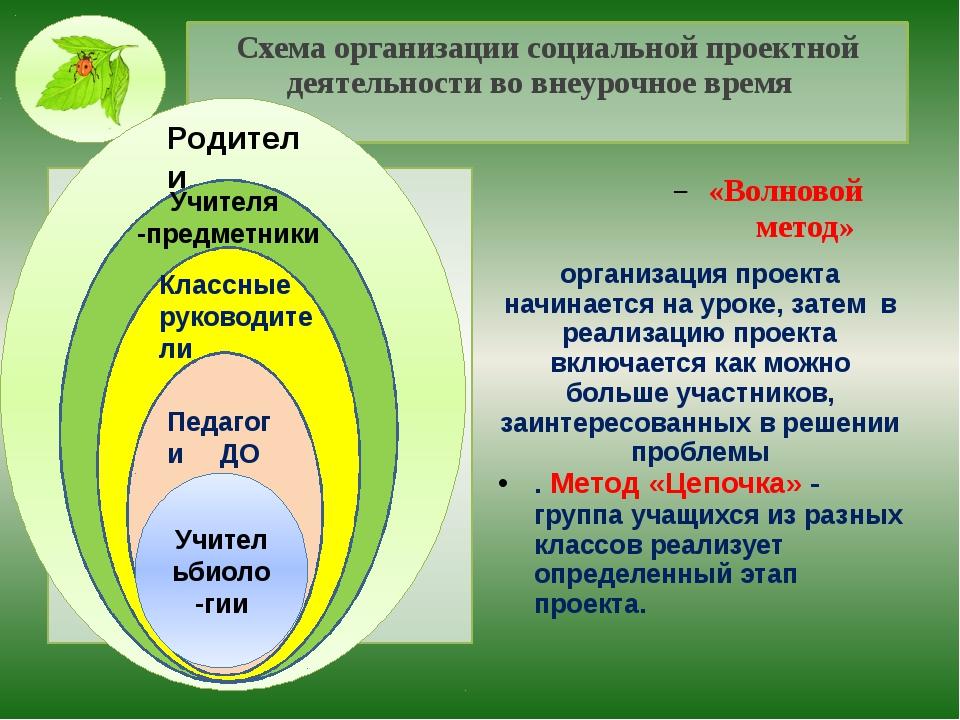 Схема организации социальной проектной деятельности во внеурочное время «Волн...