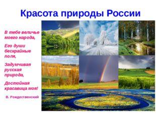 Красота природы России В тебе величье моего народа, Его души бескрайные поля
