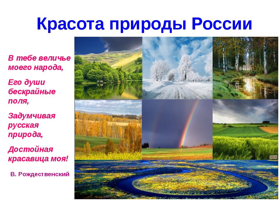 Красота природы России В тебе величье моего народа, Его души бескрайные поля...