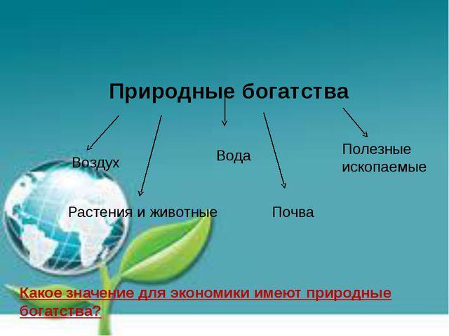 Природные богатства Воздух Вода Полезные ископаемые Почва Растения и животные...