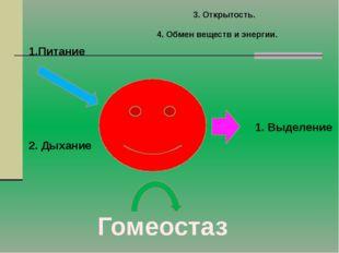 3. Открытость. Питание 2. Дыхание 1. Выделение Гомеостаз 4. Обмен веществ и э
