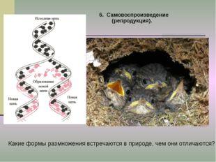 6. Самовоспроизведение (репродукция). Какие формы размножения встречаются в п
