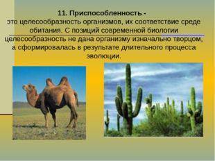 11. Приспособленность - это целесообразность организмов, их соответствие сред