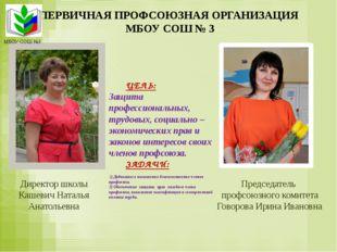 ПЕРВИЧНАЯ ПРОФСОЮЗНАЯ ОРГАНИЗАЦИЯ МБОУ СОШ № 3 Председатель профсоюзного коми
