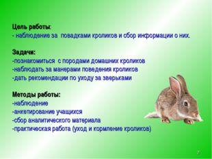 Цель работы: - наблюдение за повадками кроликов и сбор информации о них. Зад