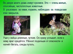 Во дворе моего дома живут кролики. Это — очень милые, спокойные, чистоплотные