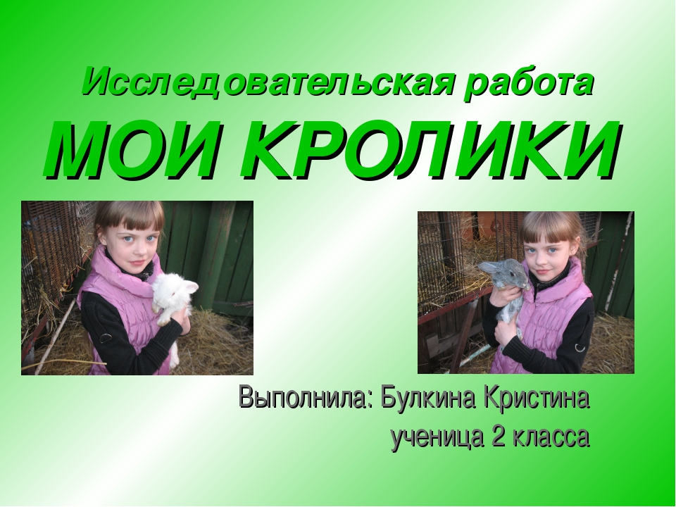 Выполнила: Булкина Кристина ученица 2 класса Исследовательская работа МОИ КР...