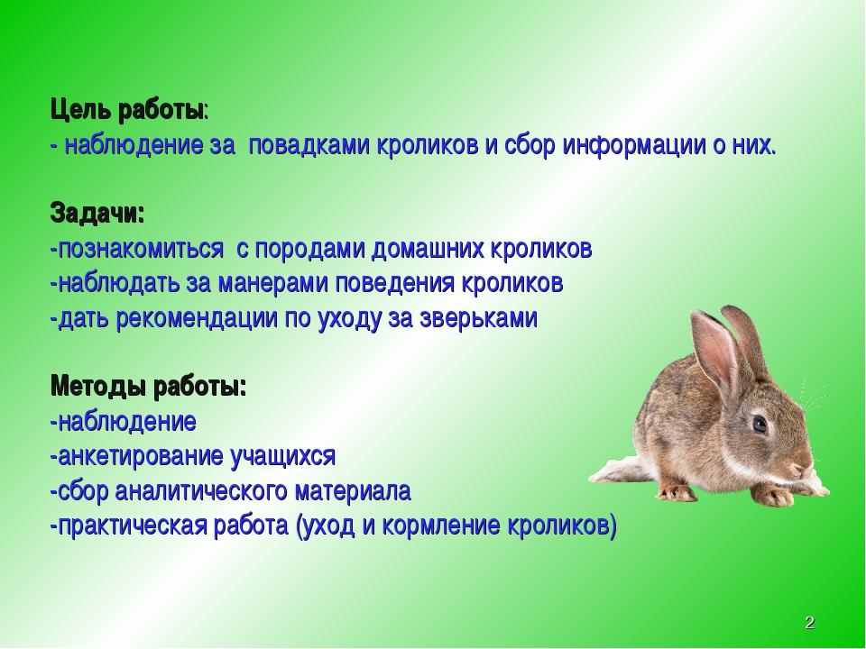 Цель работы: - наблюдение за повадками кроликов и сбор информации о них. Зад...