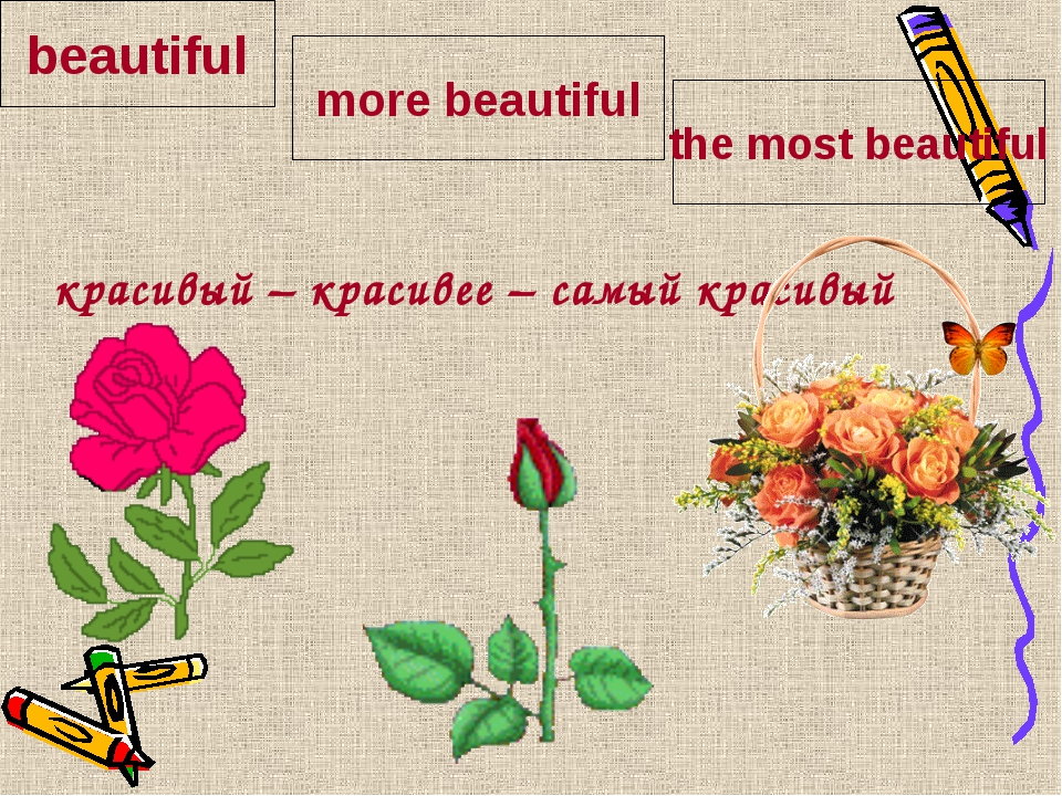 красивый – красивее – самый красивый beautiful more beautiful the most beaut...