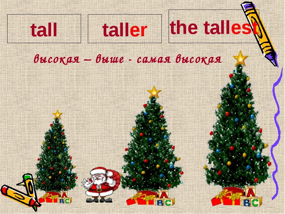 высокая – выше - самая высокая tall taller the tallest