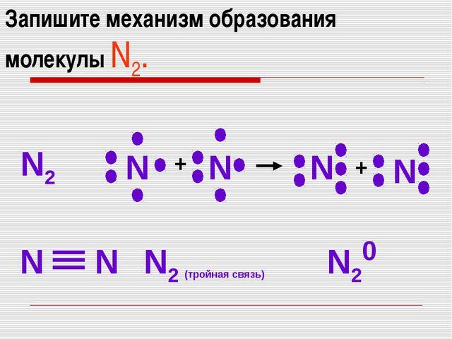 Запишите механизм образования молекулы N2. N2 N N N N N N N2 (тройная связь)...