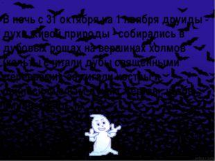 В ночь с 31 октября на 1 ноября друиды - духи живой природы - собирались в д