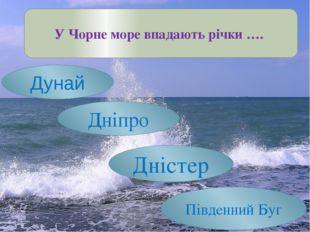 У Чорне море впадають річки …. Дунай Дніпро Дністер Південний Буг