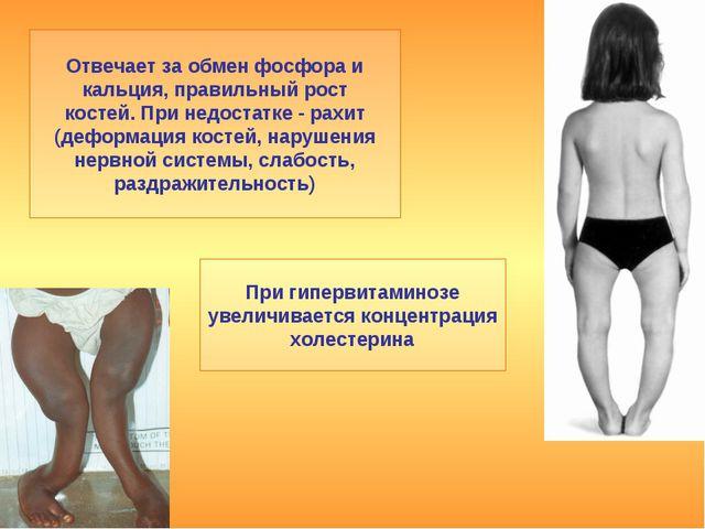 Отвечает за обмен фосфора и кальция, правильный рост костей. При недостатке -...
