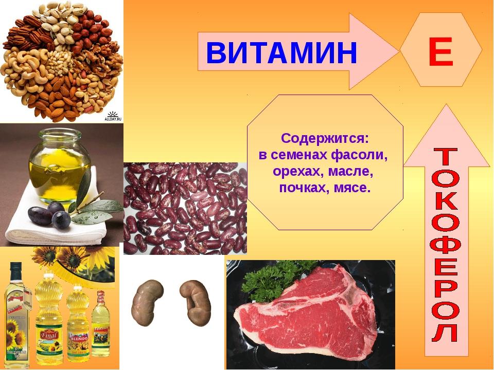 ВИТАМИН E Содержится: в семенах фасоли, орехах, масле, почках, мясе.